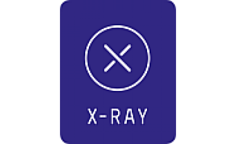 X-ray Touring